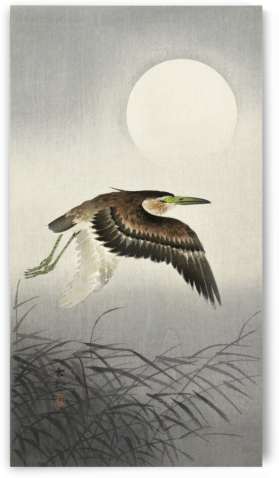 Heron at full moon by Tony Tudor