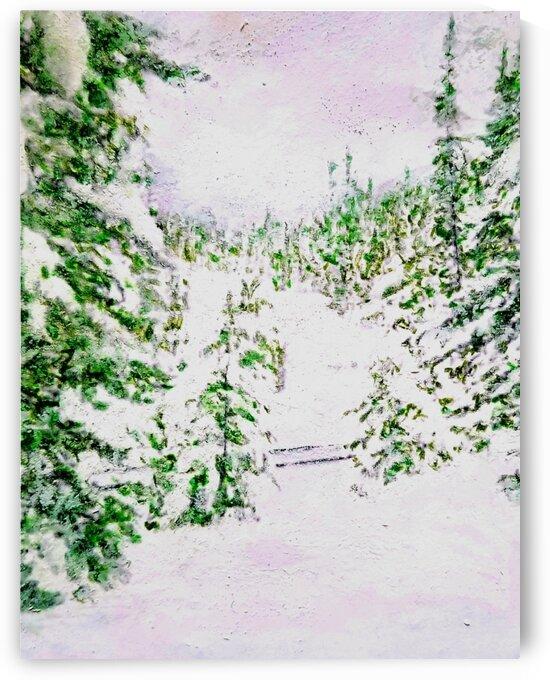 Snowy Train Tracks by djjf