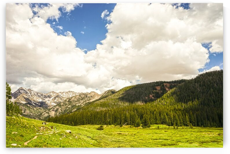 Back Country Colorado 3 of 8 by 24