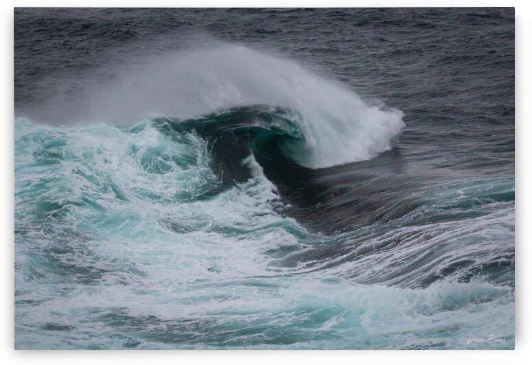 Waves in Flatrock by Dawn Evans