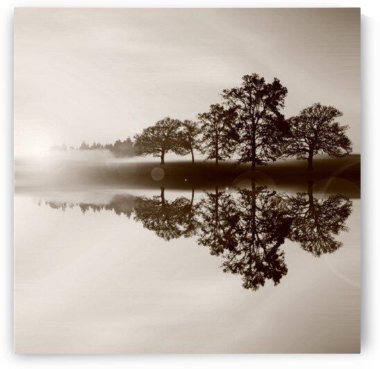 Dawn silence. by Ievgeniia Bidiuk