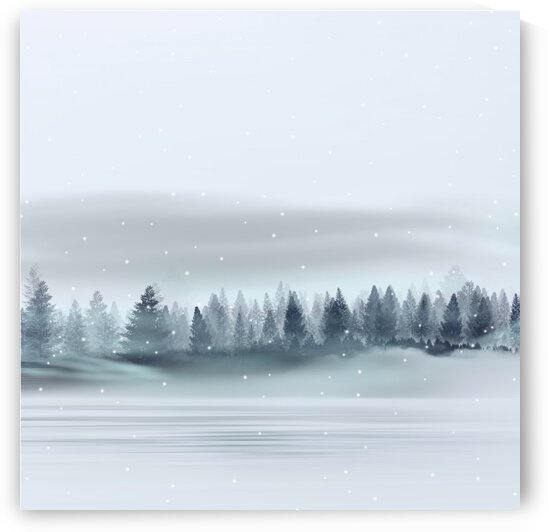 Winter. by Ievgeniia Bidiuk
