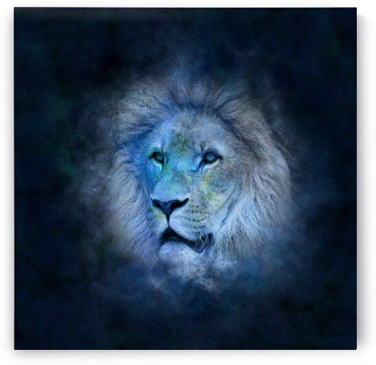 Lion Portrait by Lovely and Nicely