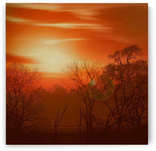 Village sunset. by Ievgeniia Bidiuk