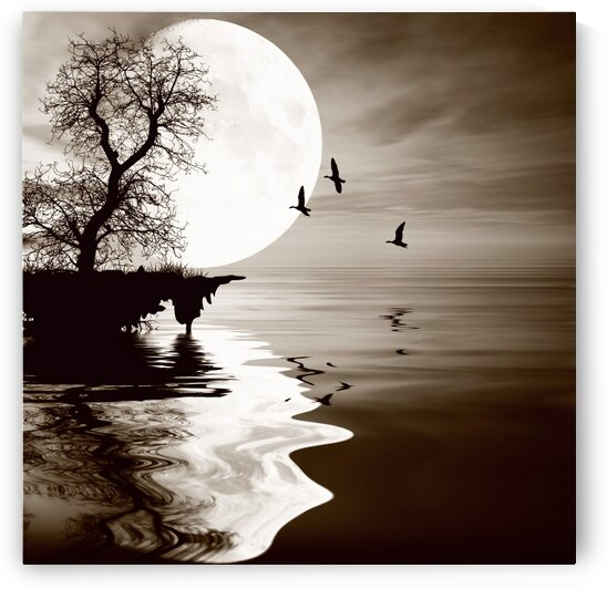 Small island against the backdrop of the big moon. by Ievgeniia Bidiuk