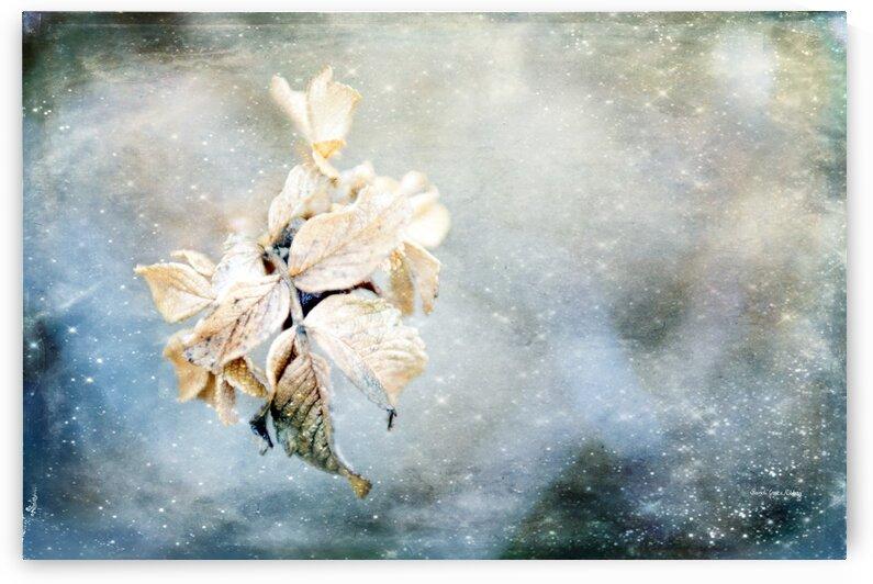 Remains by Randi Grace Nilsberg