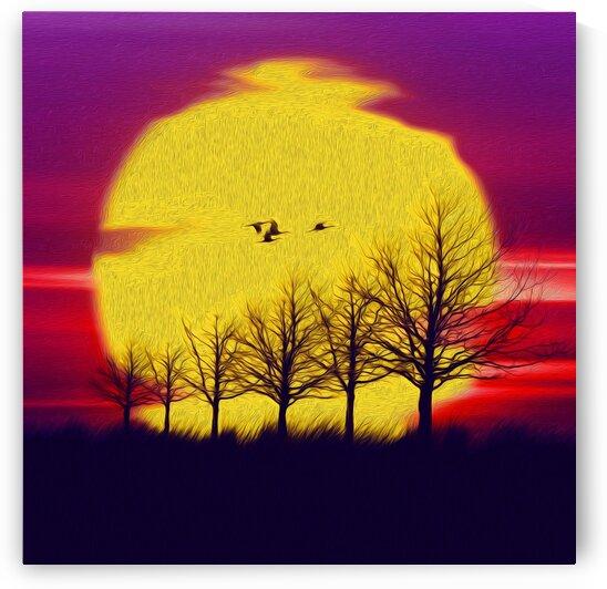 Great sun at sunset.  by Ievgeniia Bidiuk