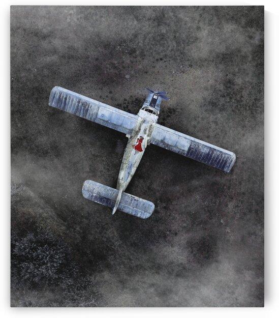 plane by Olena Domanytska