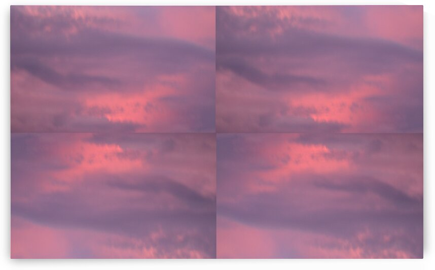After the Thunderstorm: Purple And Pink by Sherrie Larch