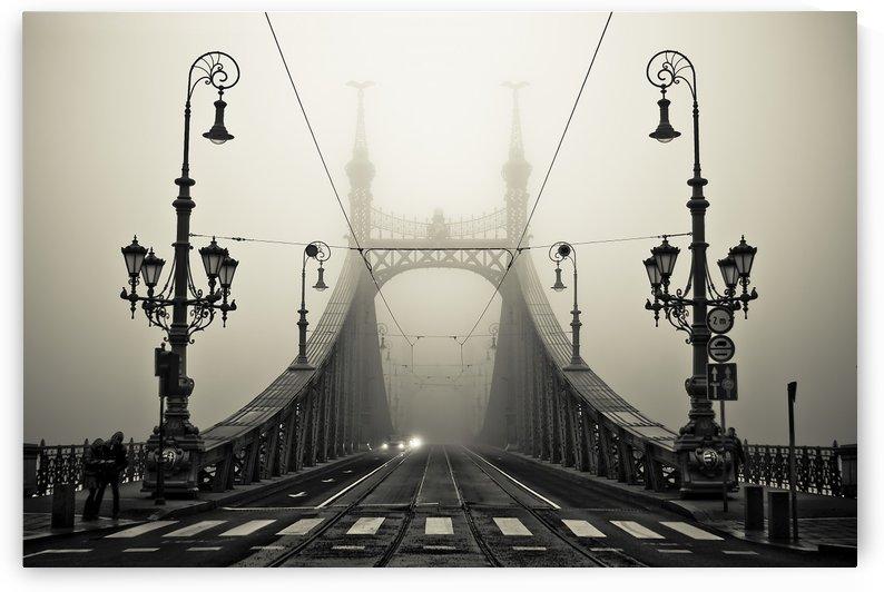 The Bridge by 1x
