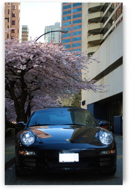 Car in the city by Lynn Prudhomme Mills
