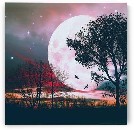 Big moon behind the tree. by Ievgeniia Bidiuk