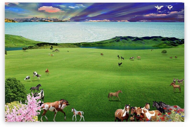 HORSE DREAM by E D Killion