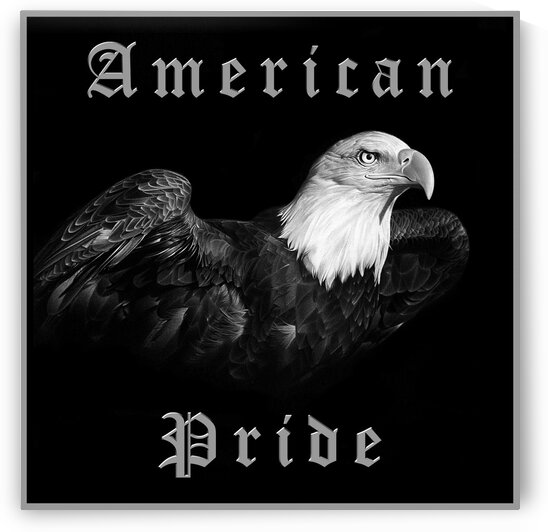 AMERICAN PRIDE 1 by Miro Gradinscak