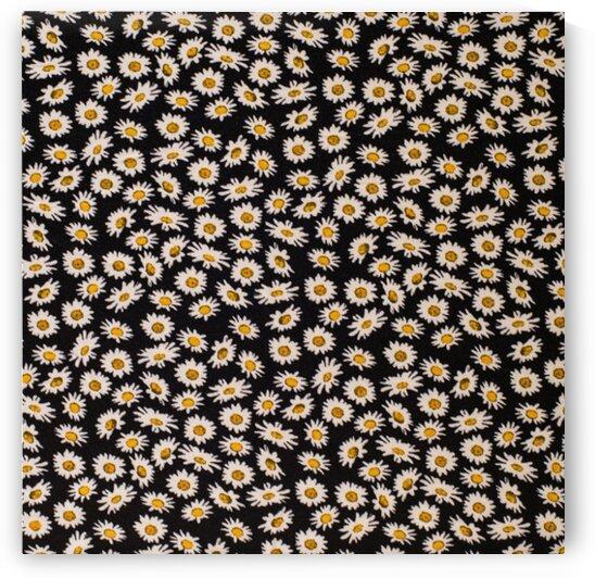 Daisy - Black - Yellow by Mutlu Topuz