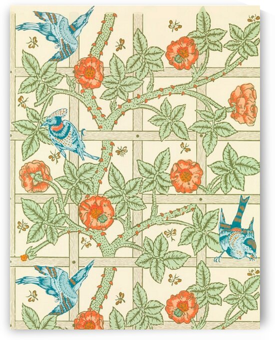 Trellis Pattern by Mutlu Topuz