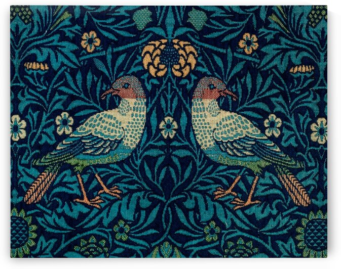 Birds by Mutlu Topuz