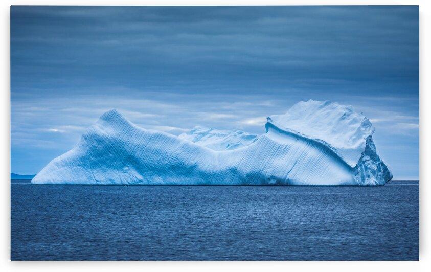 Iceberg Ho by David Brophy