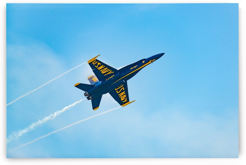 Blue Angel 4909 by Rob Clements