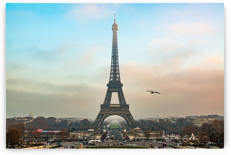 Eiffel Tower 5099 by Rob Clements