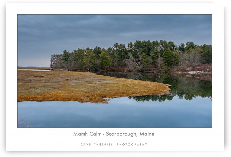 Marsh Calm by Dave Therrien