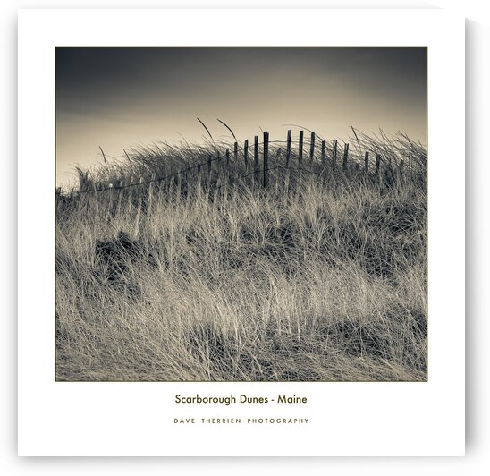 Scarborough Dunes by Dave Therrien
