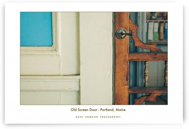 Old Screen Door by Dave Therrien
