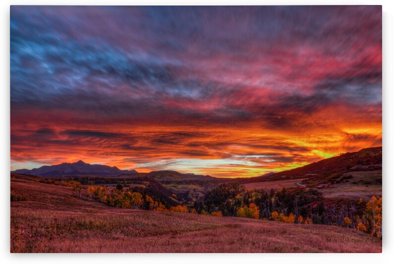 CAPTIVATED BY THE LIGHT by Bill Sherrell