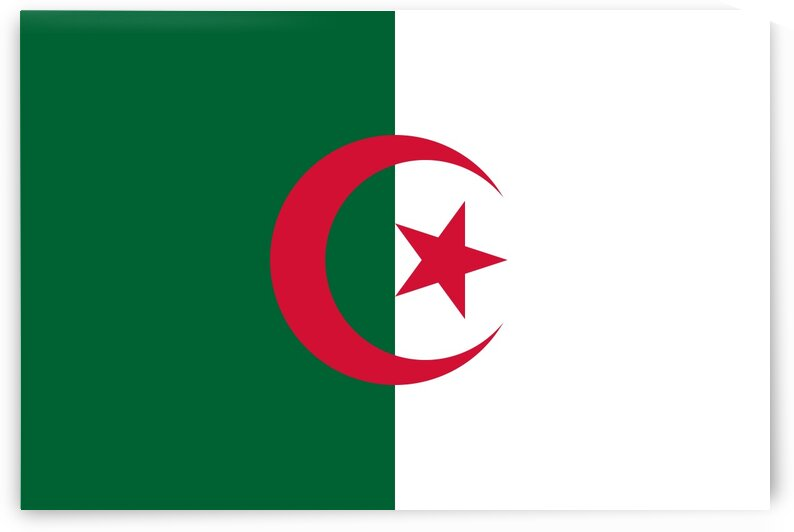 Algeria Flag by Fun With Flags