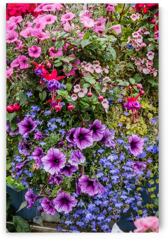 Spring Floral Basket by bj clayden photography