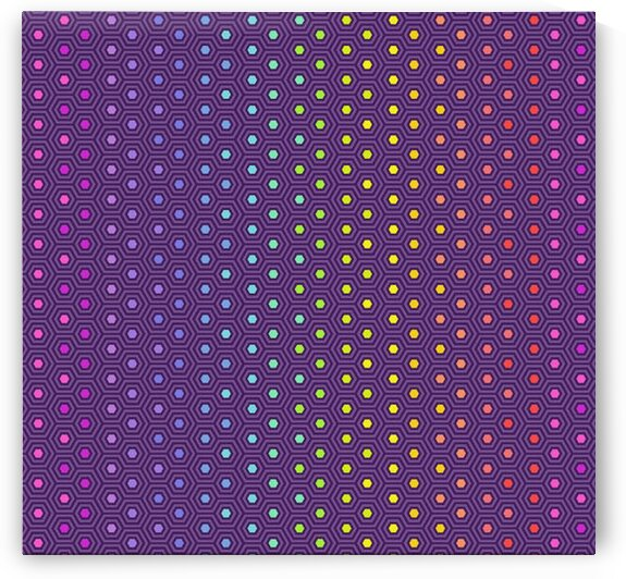 Tula Pink True Colors Hexy Rainbow Starling by Mutlu Topuz