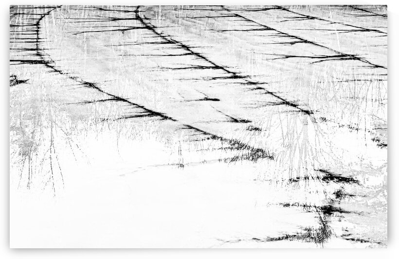 Frozen Pond Abstract by Kevin R Schochat