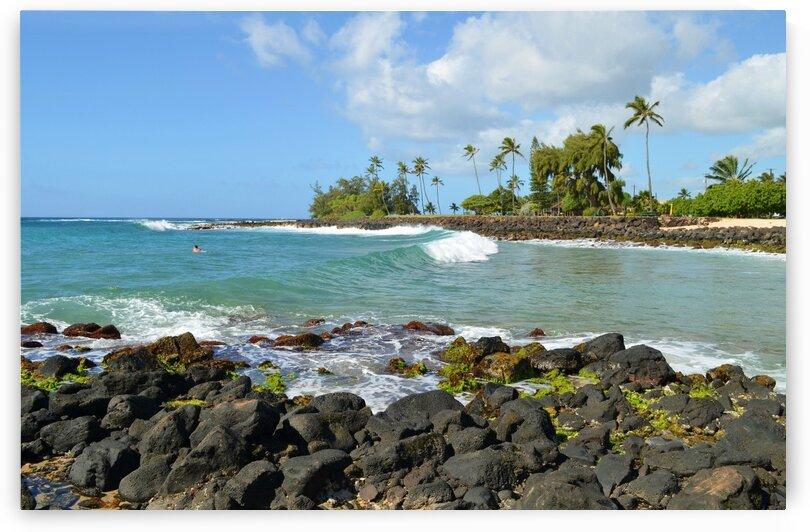 Kauai - Garden Isle by Lynn Prudhomme Mills