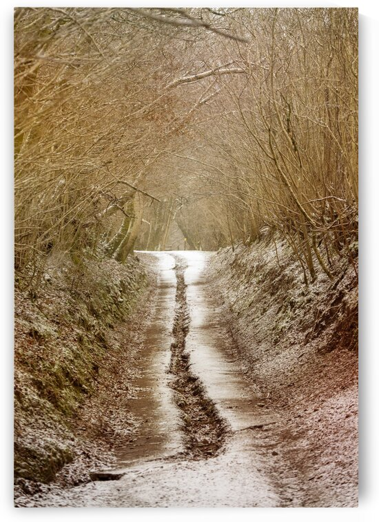A country road in Winter by Leighton Collins