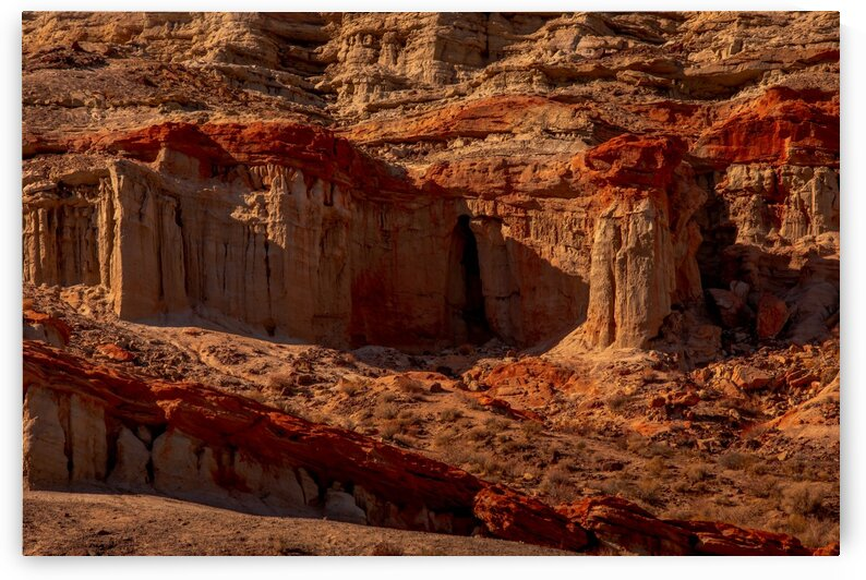 Red Dawn in Red Rock Canyon by Nicholas