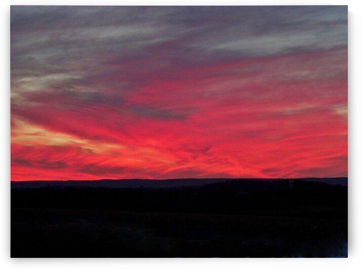 Red Sky by by Tara