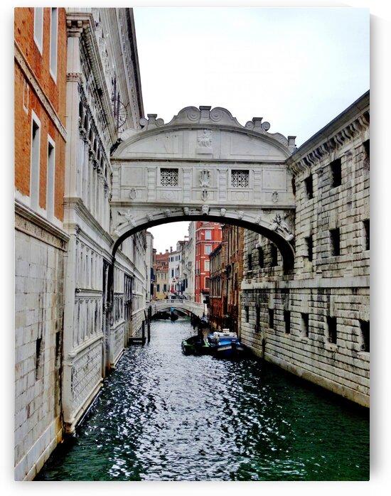 Venice Canal by by Tara