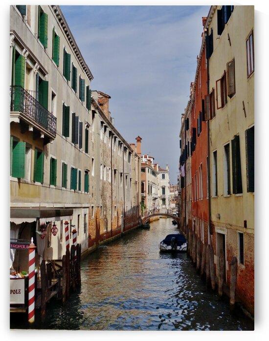 Venice Canal 2 by by Tara