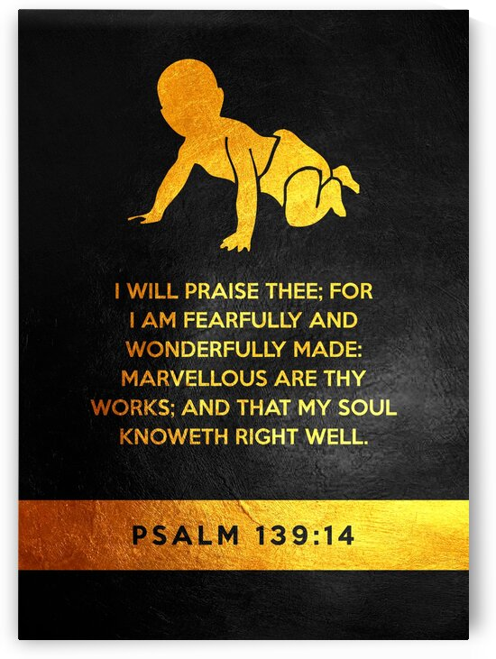 Psalm 139:14 by ABConcepts