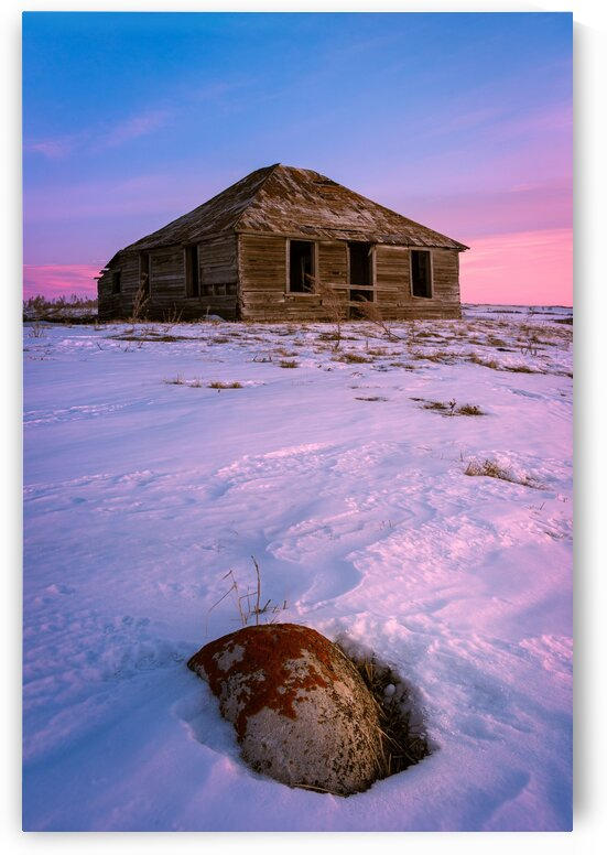 Abandoned Pink by Andrew OBrien