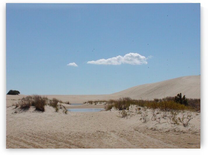 Sand dunes 2 by by Tara