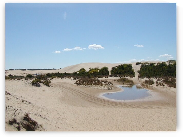 Sand dunes by by Tara