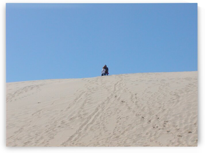 Sand dunes 3 by by Tara