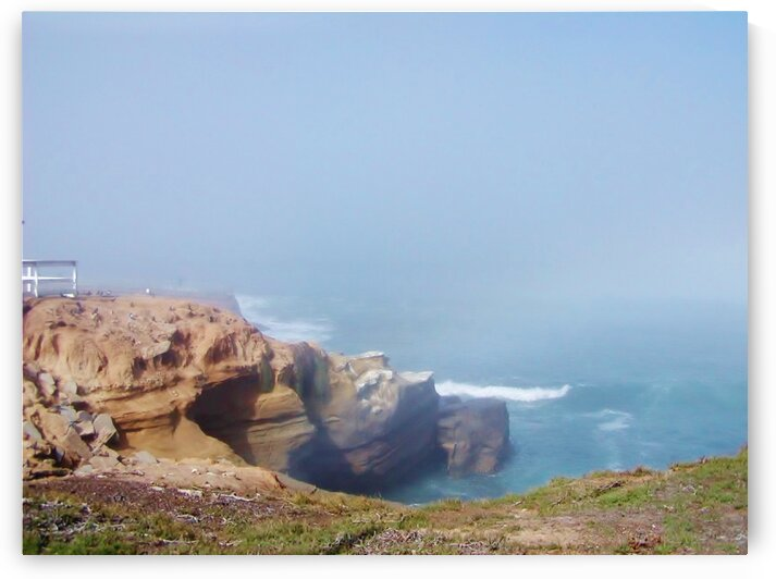 Pacific coast cliff by by Tara