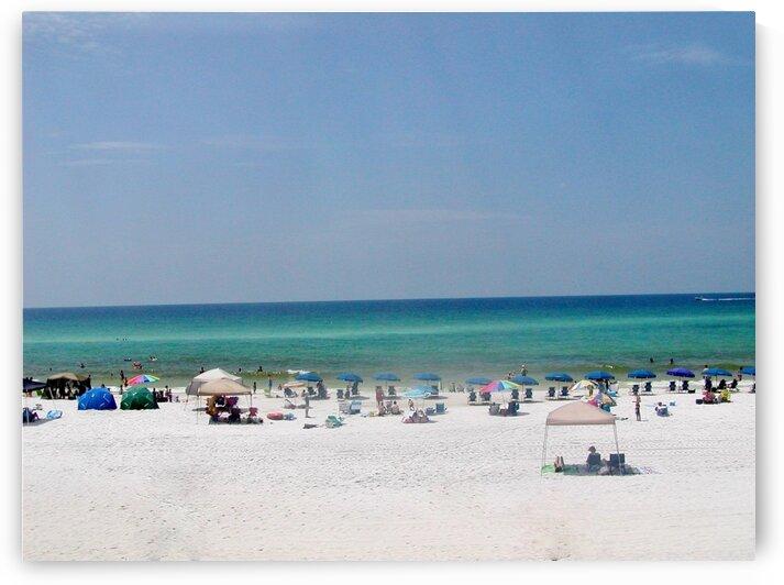 Florida beach by by Tara