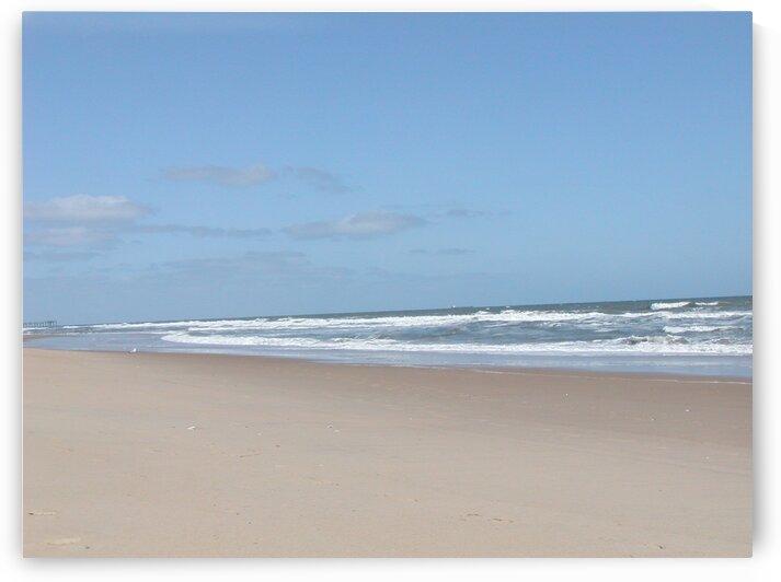 Untouched Beach by by Tara