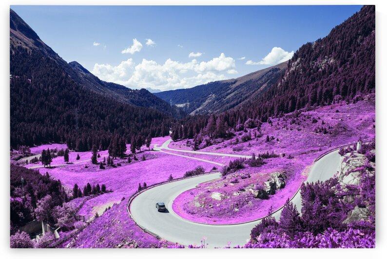 Alpine Road   Infrared   Purple by ASAR STUDIOS