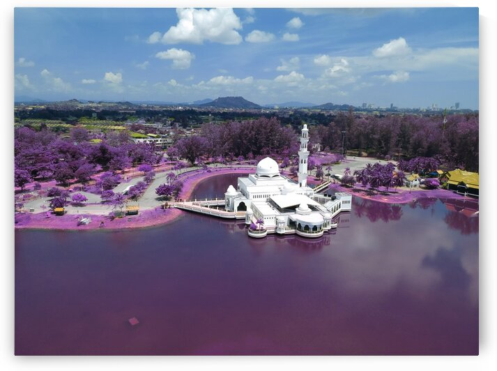 Amazing Mosques around the world   113   Infrared   Purple by ASAR STUDIOS