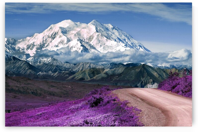 Alaskan wilderness landscape   1   Infrared   Purple by ASAR STUDIOS