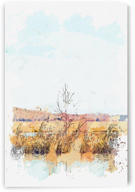 Brown Grass Field Near Body of Water    watercolor ca 2020 by Ahmet Asar by ASAR STUDIOS